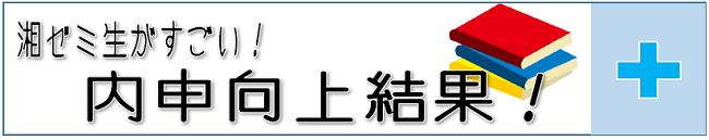 2019内申向上例.png