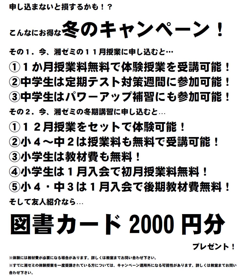 2020冬HP用②.png