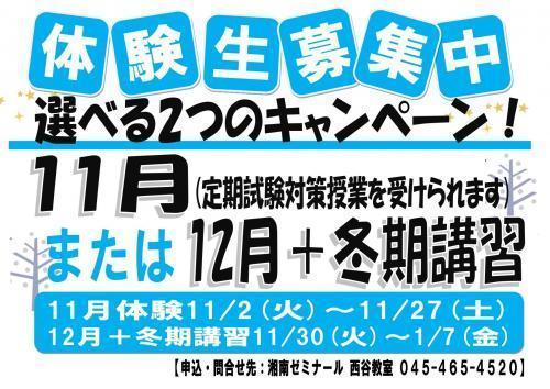 11月、12月冬期掲示用(ブルーまたはシアン)_page-0001.jpg
