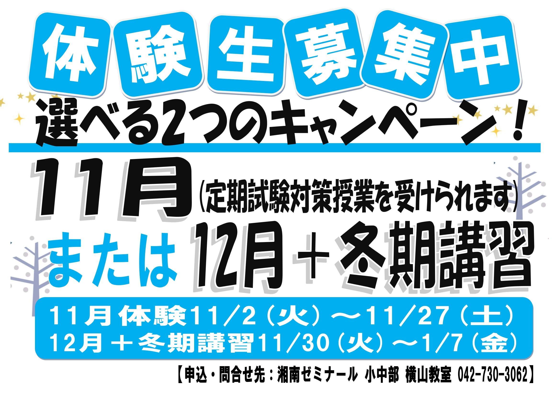 11月、12月冬期掲示用(ブルーまたはシアン)-1.jpg